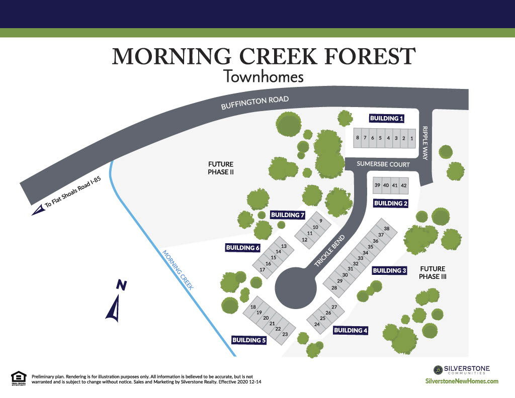 Morning Creek Forest